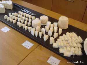 20種類のチーズ!